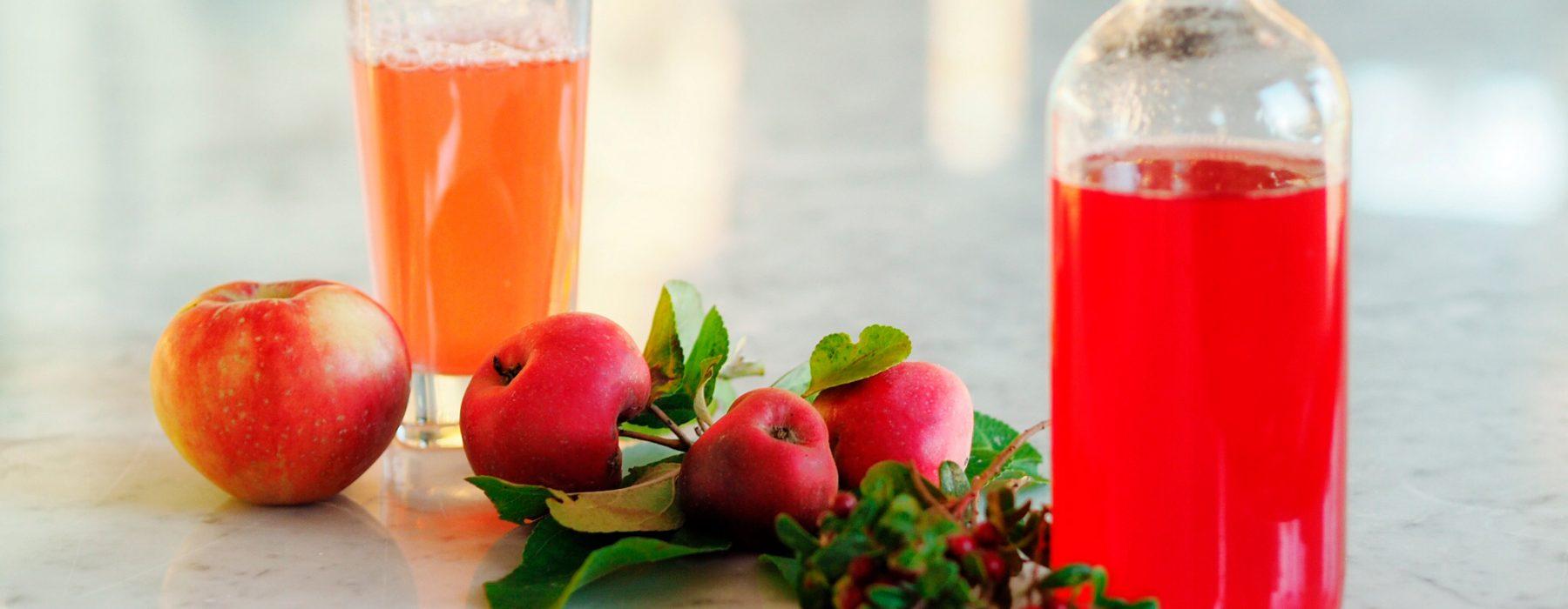 Puolukka-omenamehu